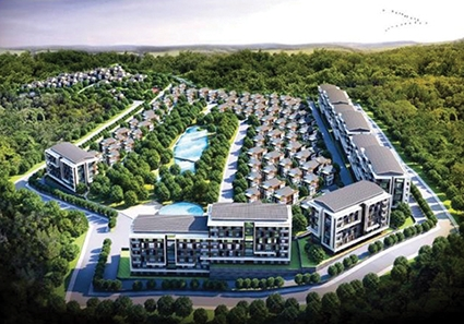 UAE's Green Valley to Launch Two Large-Scale Projects in