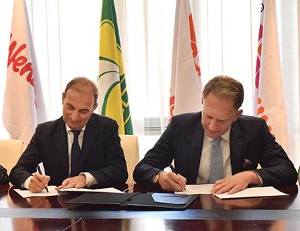 Carrefour Wissol Group Georgia Form A Successful Partnership