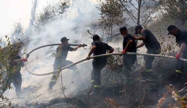 Armenia sends fire appliances to help douse Georgia wildfire