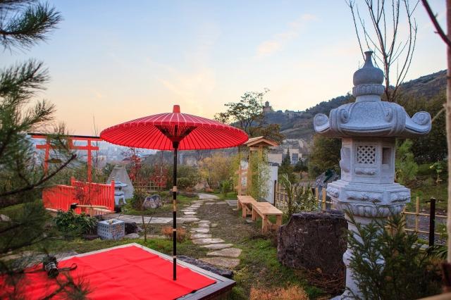میهمانی-چای-در-منطقه-ژاپنی،-باغ-گیاه-شناسی-گرجستان