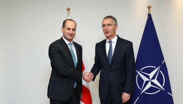 Georgia's Foreign Minister Meets NATO Secretary General